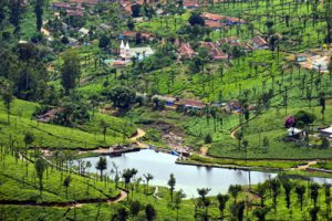 Valparai travel tips