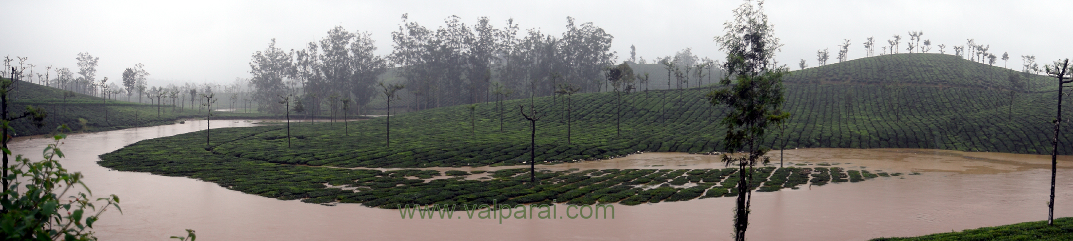 Valparai Present Weather